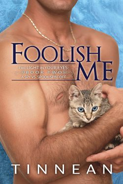 Foolish Me - Tinnean - The Light in Your Eyes - Spy vs. Spoof