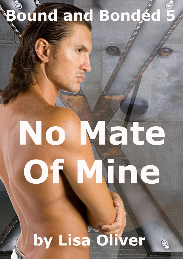 Book Cover: No Mate Of Mine