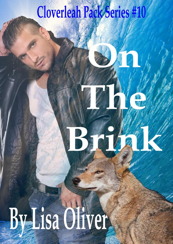 Book Cover: On The Brink