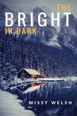 The Bright in Dark - Missy Welsh