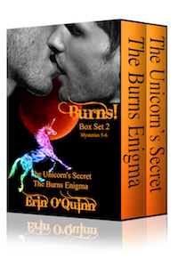 Burns Box Set 2 - Erin O'Quinn