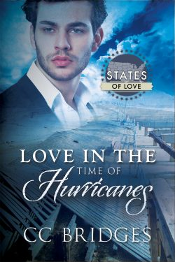 Love in the Time of Hurricanes - C.C. Bridges