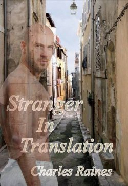 Stranger in Translation - Charles Raines