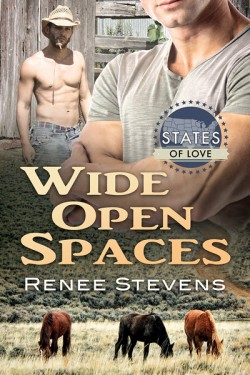 Wide Open Spaces - Renee Stevens - States of Love