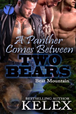 A Panther Comes Between Two Bears - Kelex - Bear Mountain