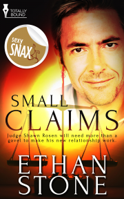 Book Cover: Small Claims
