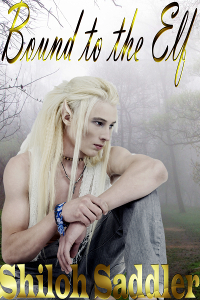 Bound to the Elf - Shiloh Saddler