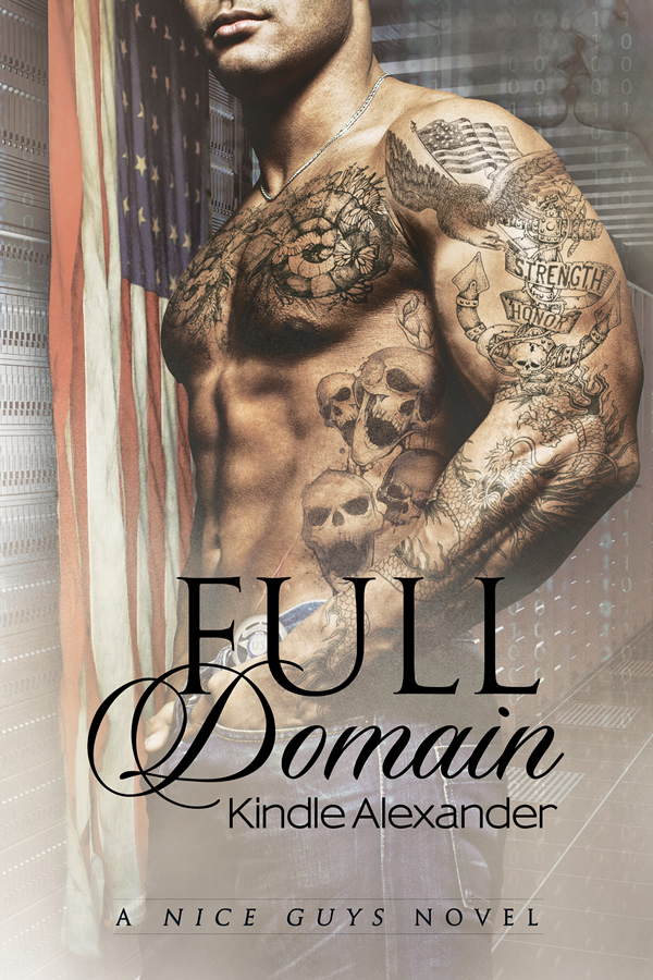 Book Cover: Full Domain (Nice Guys Novel 3)