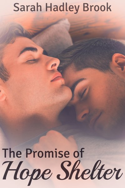 The Promise of Hope - Sarah Hadley Brook