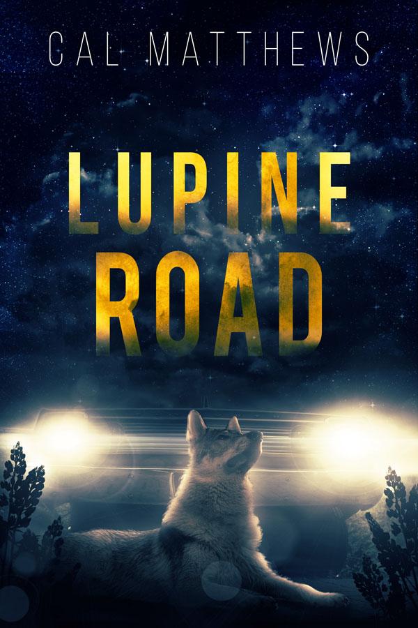 Lupine Road - Cal Matthews