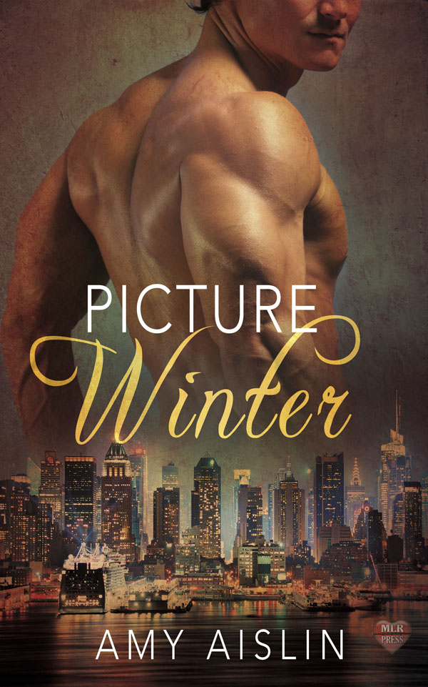 Picture Winter - Amy Aislin