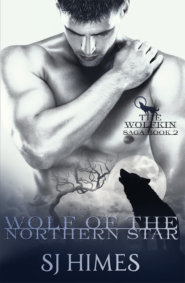 Wolf of the Northern Star - SJ Himes - Wolfkin Saga