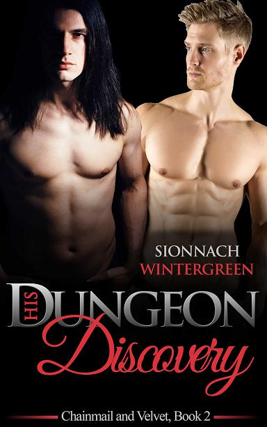 Book Cover: His Dungeon Discovery