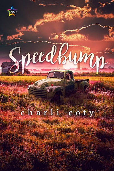Book Cover: Speedbump