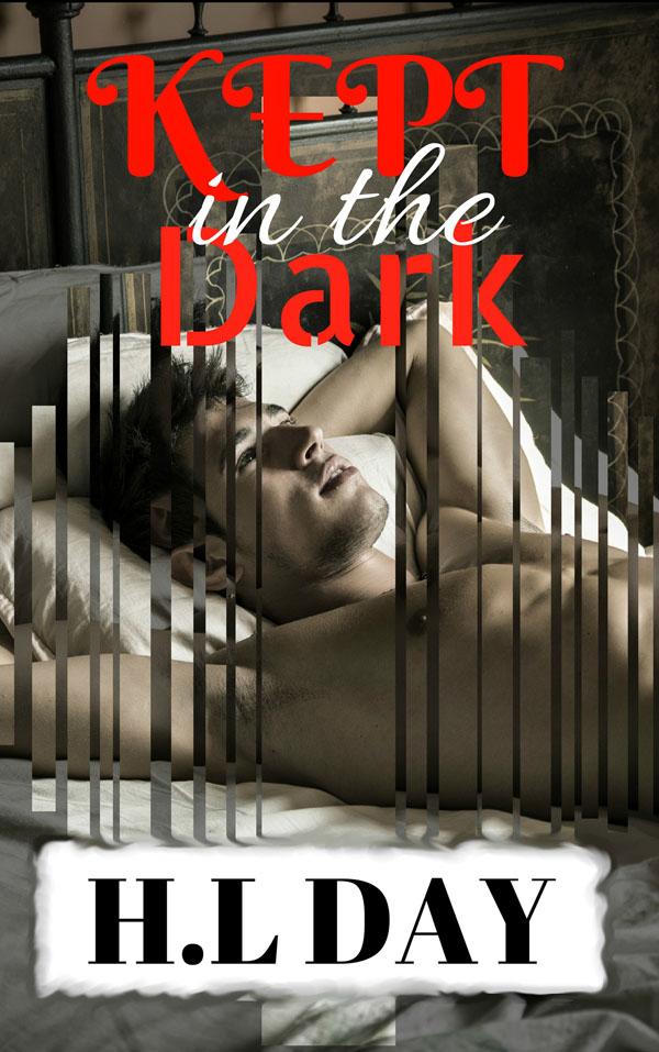 In the Dark - H.L. Day