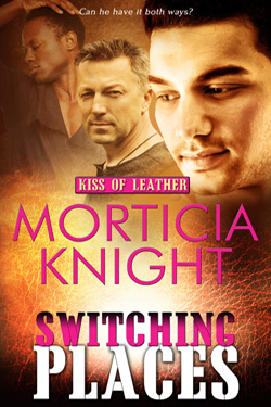 Switching Places Co-op Banner - Morticia Knight