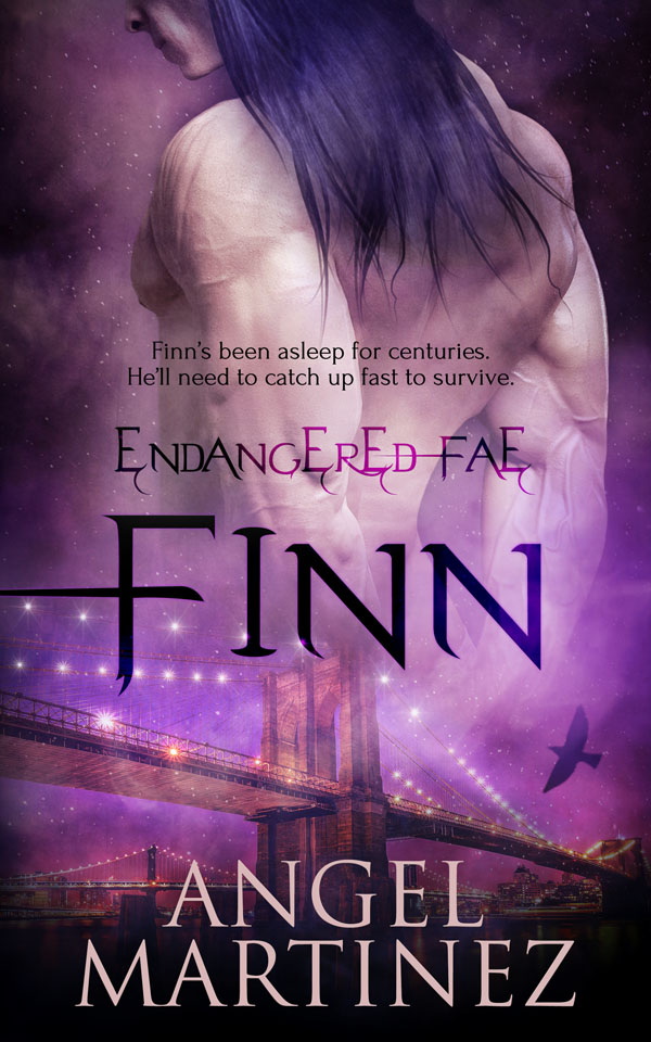 Book Cover: Finn