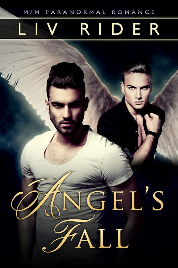 Angel's Fall - Liv Rider