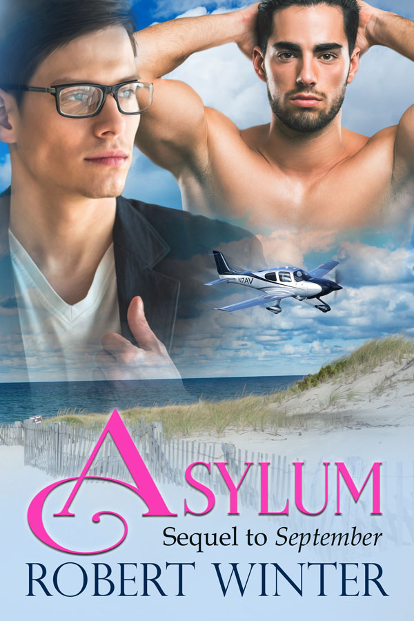 Asylum - Robert Winter