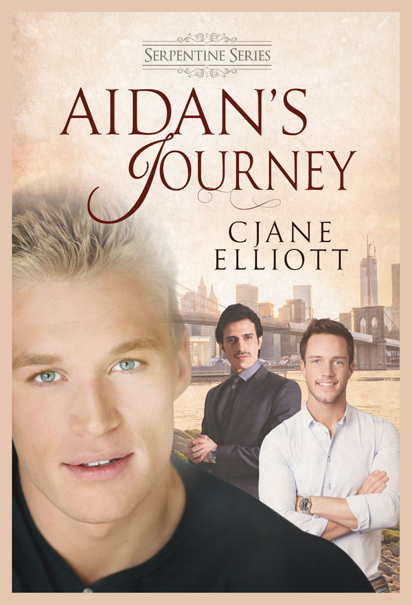Aidan's Journey - CJane Elliott - Serpentine Series