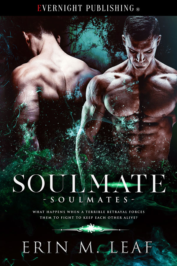 Book Cover: Soulmate