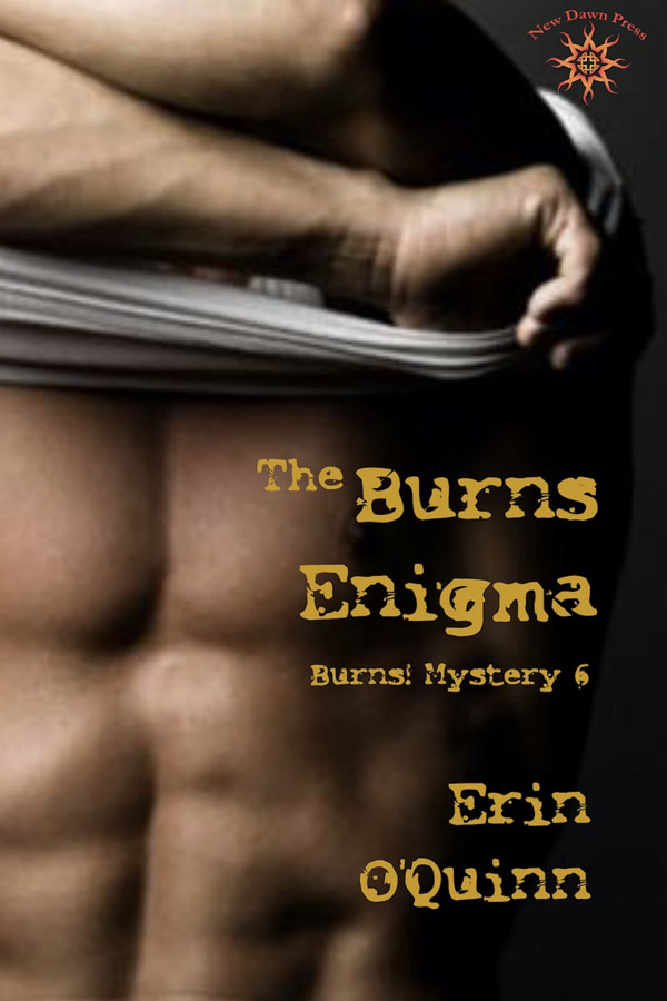 The Burns Enigma - Erin O'Quinn - Burns Mystery