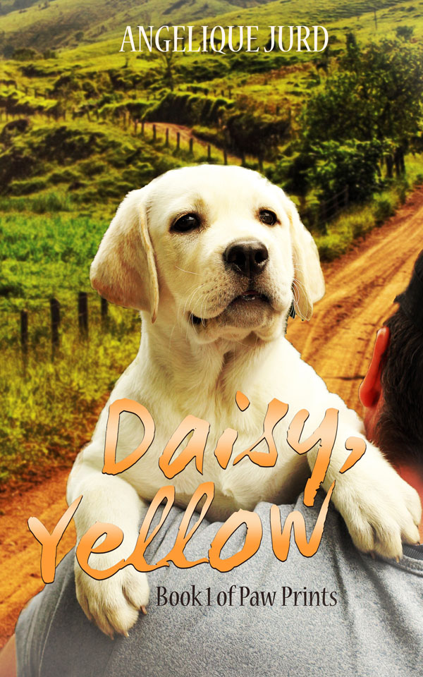 Daisy Yellow - Angelique Jurd