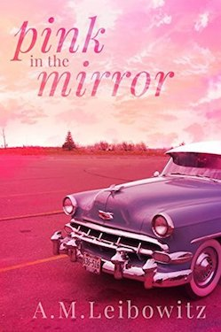Pink in the Mirror - A.M. Leibowitz
