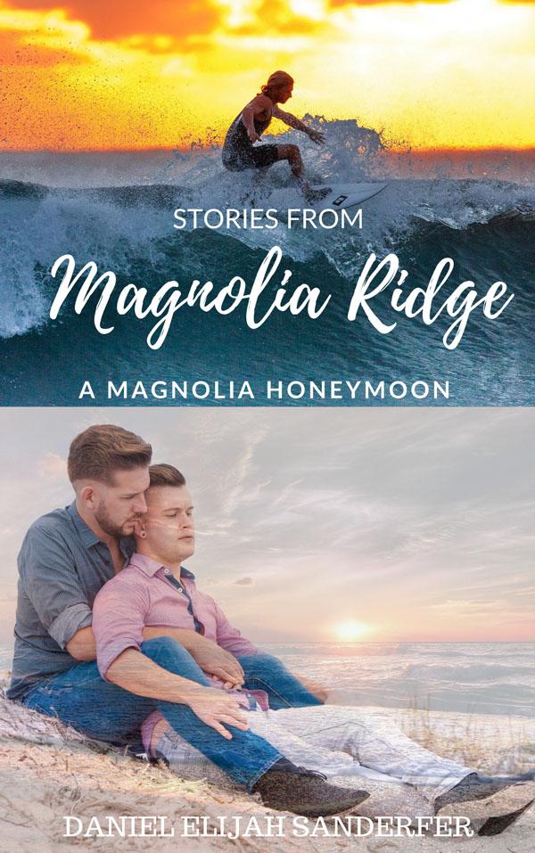 Stories From Magnolia Ridge - Daniel Elijah Sanderfer