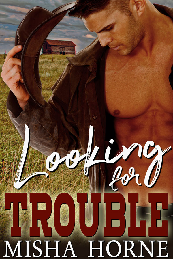 Looking for Trouble - Misha Horne
