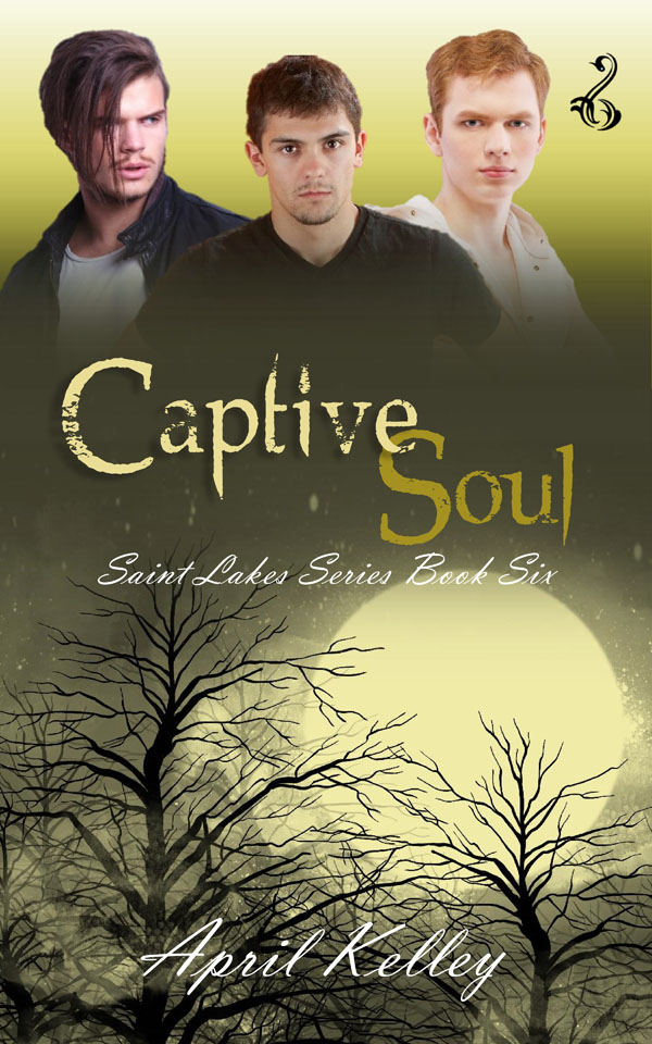 Captive Soul - April Kelley - Saint Lakes