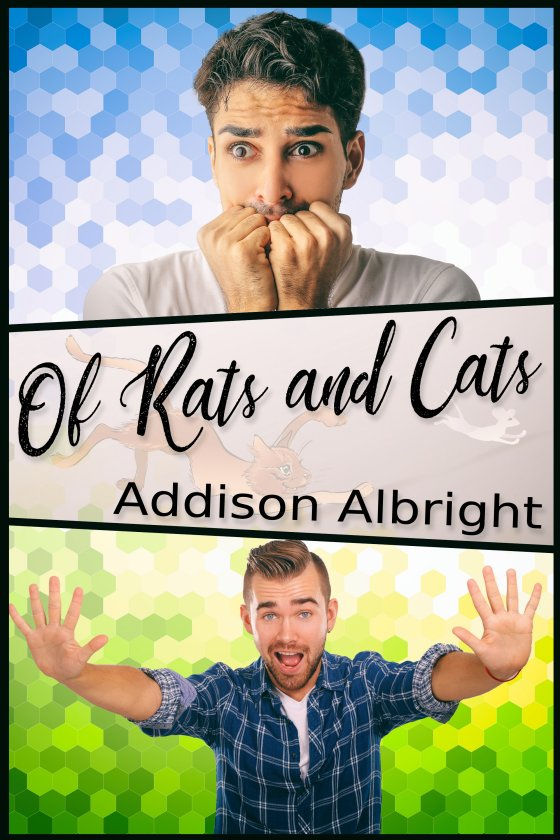 Of Rats and Cats - Addison Albright