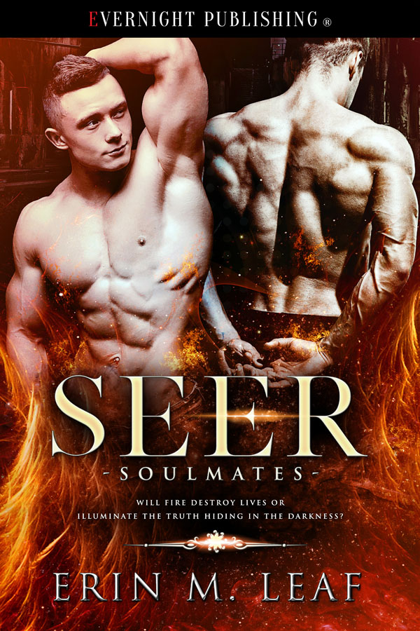 Seer - Erin M. Leaf - Bad Oak Boys