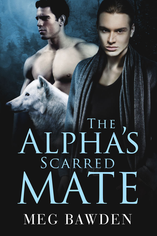 The Alpha's Scarred Mate - Meg Bawden