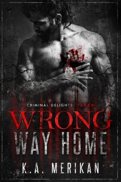 Book Cover: Wrong Way Home