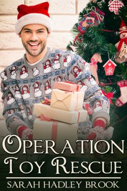Operation Toy Rescue - Sarah Hadley Brook